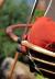 Подвесное кресло-качели с подушками Set 1